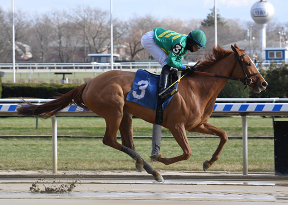 Sunday's Insights: Royal Flag Goes for Third Straight