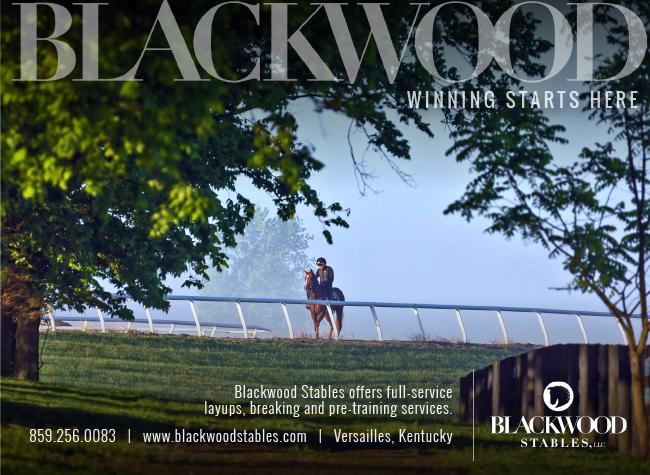 Blackwood 07-06-20
