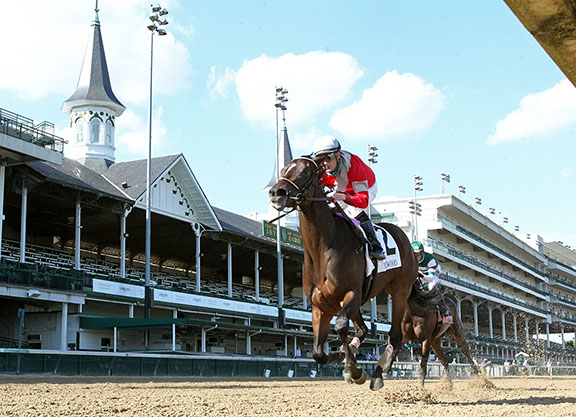 Majesticperfection's Four Graces Captures the Dogwood