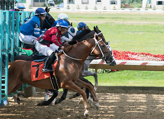 Thistledown to Open with 10% Purse Increases