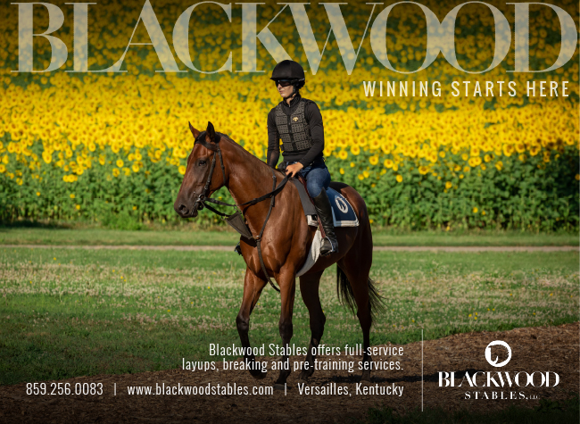 Blackwood Stables – Interstitial – 8/3/20