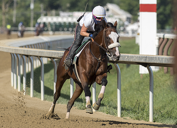 Tiz the Law Tries for Second Leg of 'Quadruple Crown' in Runhappy Travers