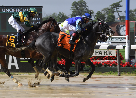 Gold Fever Winner Added to Fasig-Tipton Horses of Racing Age Sale