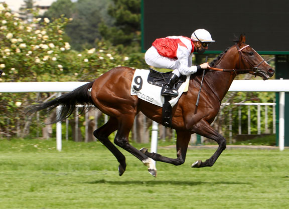 Deauville Clash The Feature On Saturday