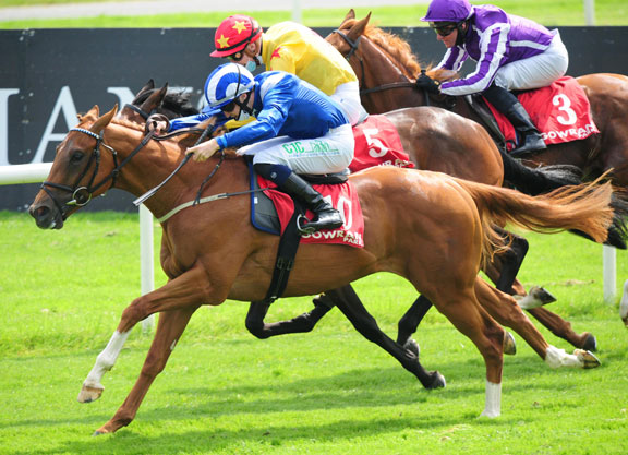 Dubawi's Wuqood a New Rising Star At Gowran