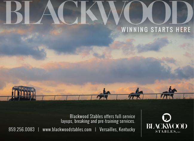 Blackwood Stables – Interstitial – 9/28/20