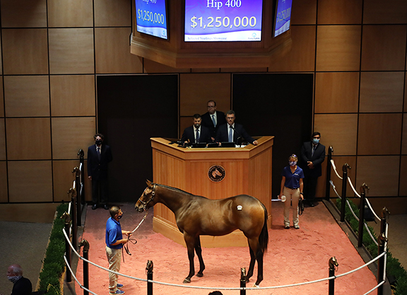 Market Momentum Builds with First Ky Yearling Sale in the Books