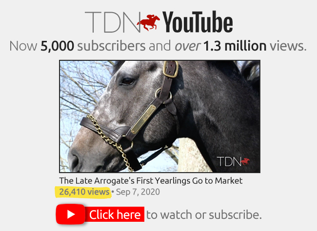 TDN YouTube interstitial – NEW – 9/25/20