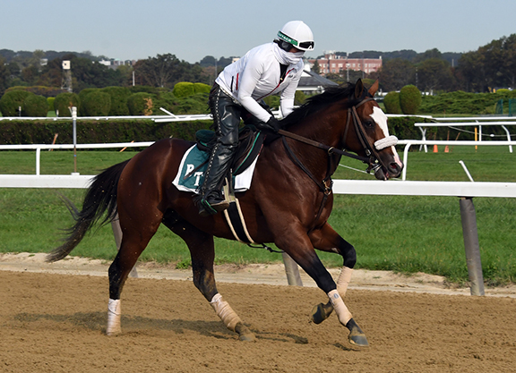 Tiz the Law to Skip Preakness, Train Up to Breeders' Cup