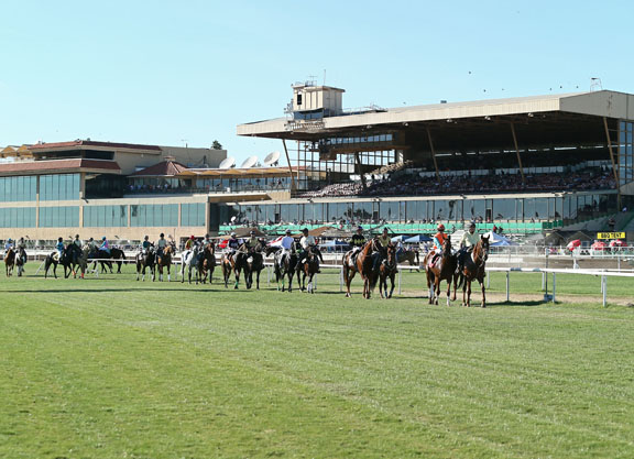 AZHBPA to Turf Paradise Racing Proposal: We've Conditions Too