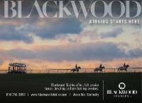Blackwood Stables – Interstitial – 9/28/20