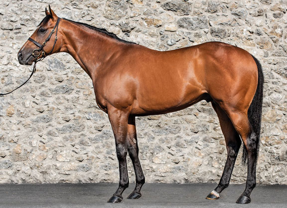 Value Sires Part Five: First 3-Year-Olds