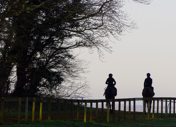Well-Being Survey Launched By British Racing