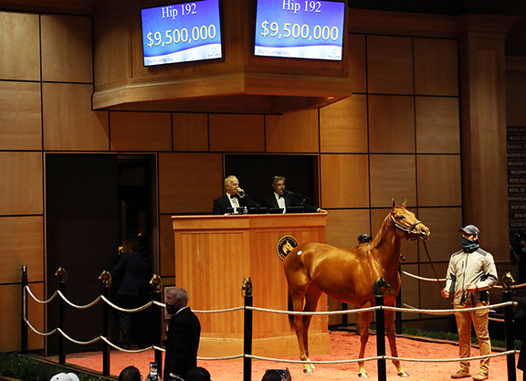 The Stars Come Out at Fasig-Tipton