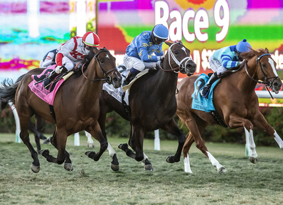 Domestic Spending Flies Home to Hollywood Derby Score