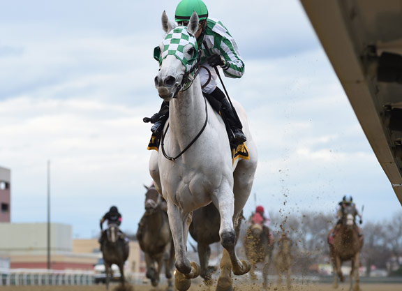 Tapit's Mrs Danvers Romps in the Comely