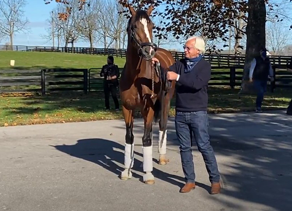 Authentic Retired to Spendthrift
