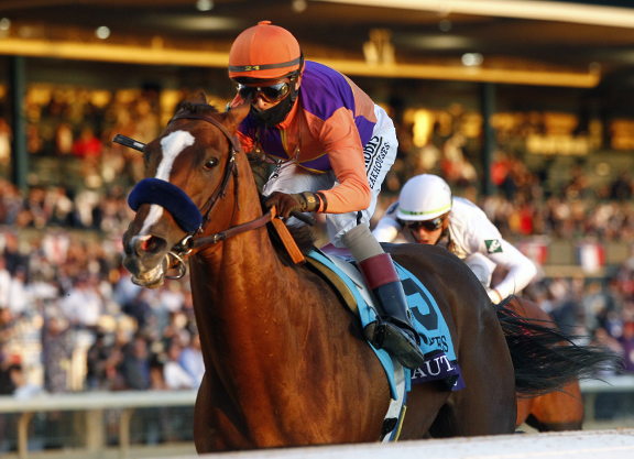 Authentic, Improbable, Monomoy Girl to Fight Out Horse Of The Year