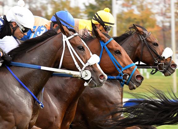 24 Stakes on Tap at Laurel Winter Meet