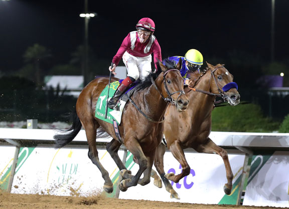 Mishriff Bests Charlatan In Saudi Cup; Knicks Go Fourth - Thoroughbred Daily News