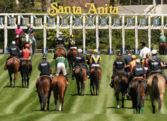 Runhappy Santa Anita Derby Card Produces High Handle Number