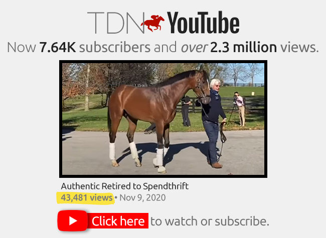 TDN YouTube NEW Apr. 2021: 04-19-21