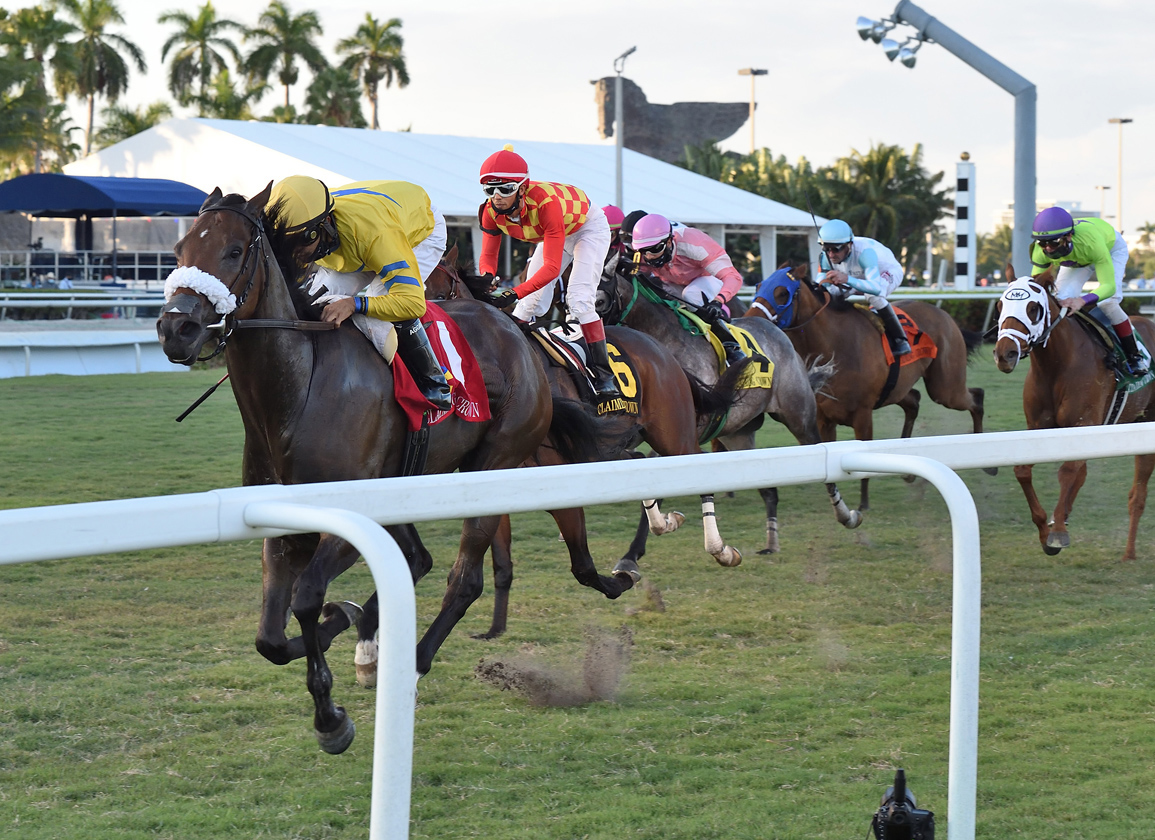 Stakes Winner Fiya Euthanized