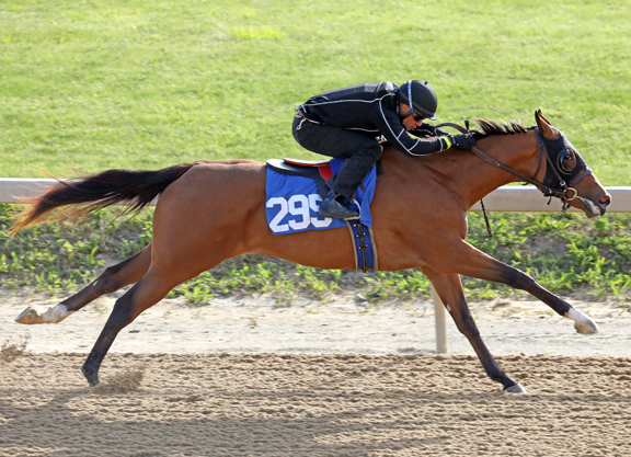 Union Rags Filly Swiftest in Timonium Wednesday