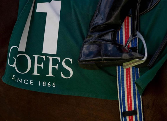 Richest Juvenile Race in Europe Unveiled Exclusively For Goffs Orby Grads