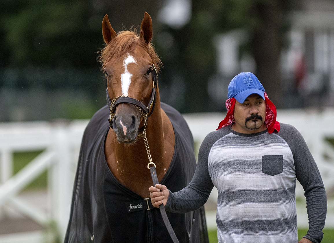 Curlin 'Rising Star' Fittingly Favored in Curlin