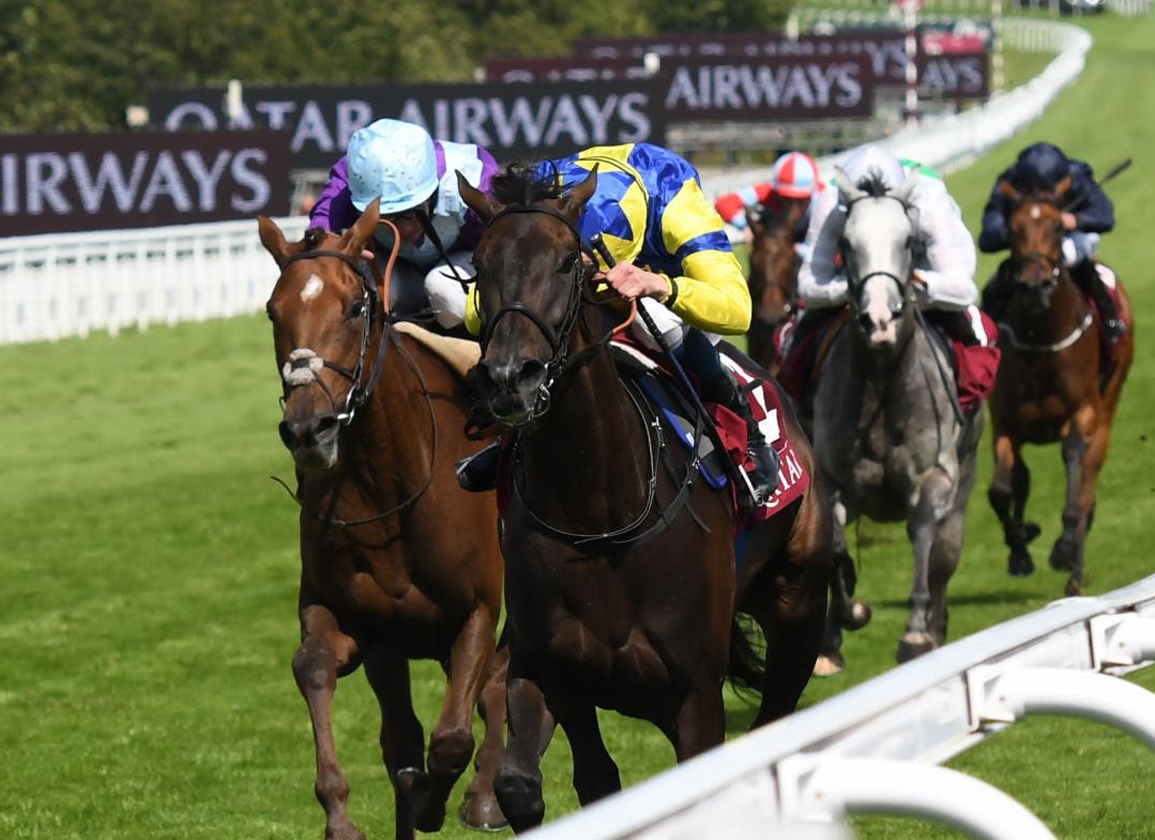 Le Havre's Wonderful Tonight In Charge In The Lillie Langtry