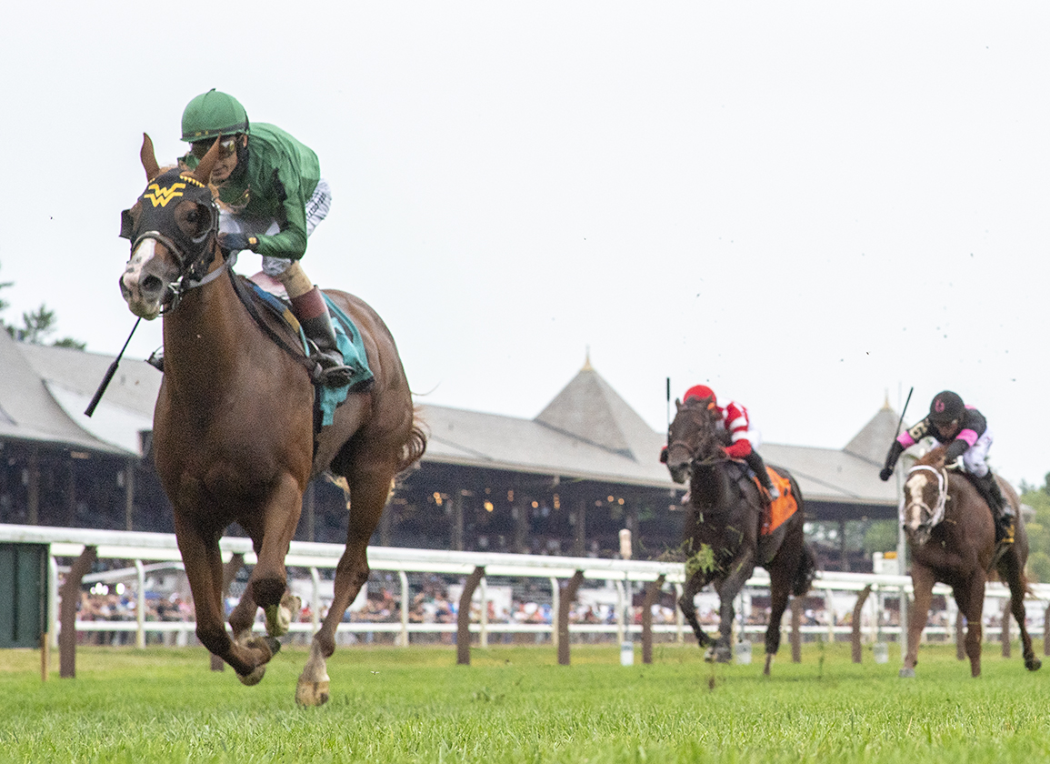 Ward Filly Tries to Stay Perfect in Deep Matron