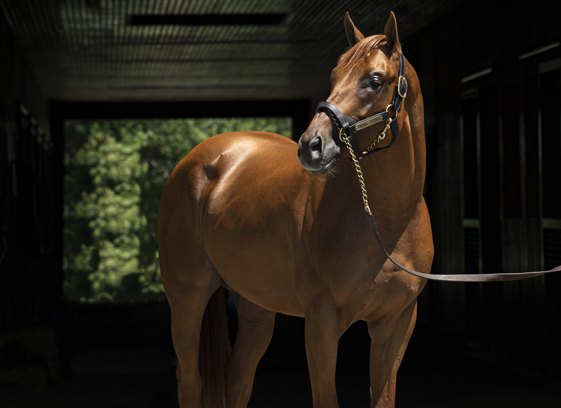 Known Agenda Retired to Spendthrift