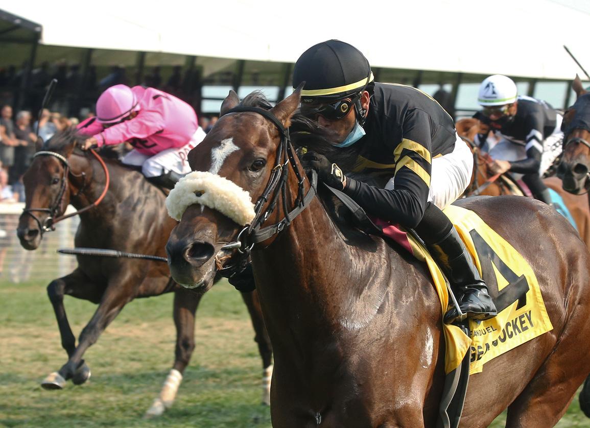 Gear Jockey Ridden to Perfection in Turf Sprint