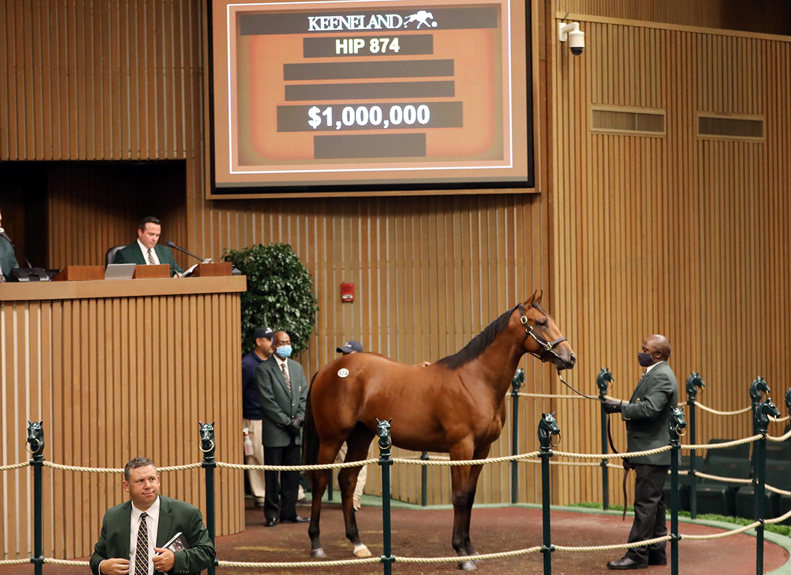 Stellar Book 2 Concludes at Keeneland