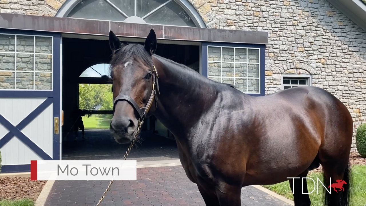 Mo Town: The Next Star for Sire of Sires Uncle Mo?