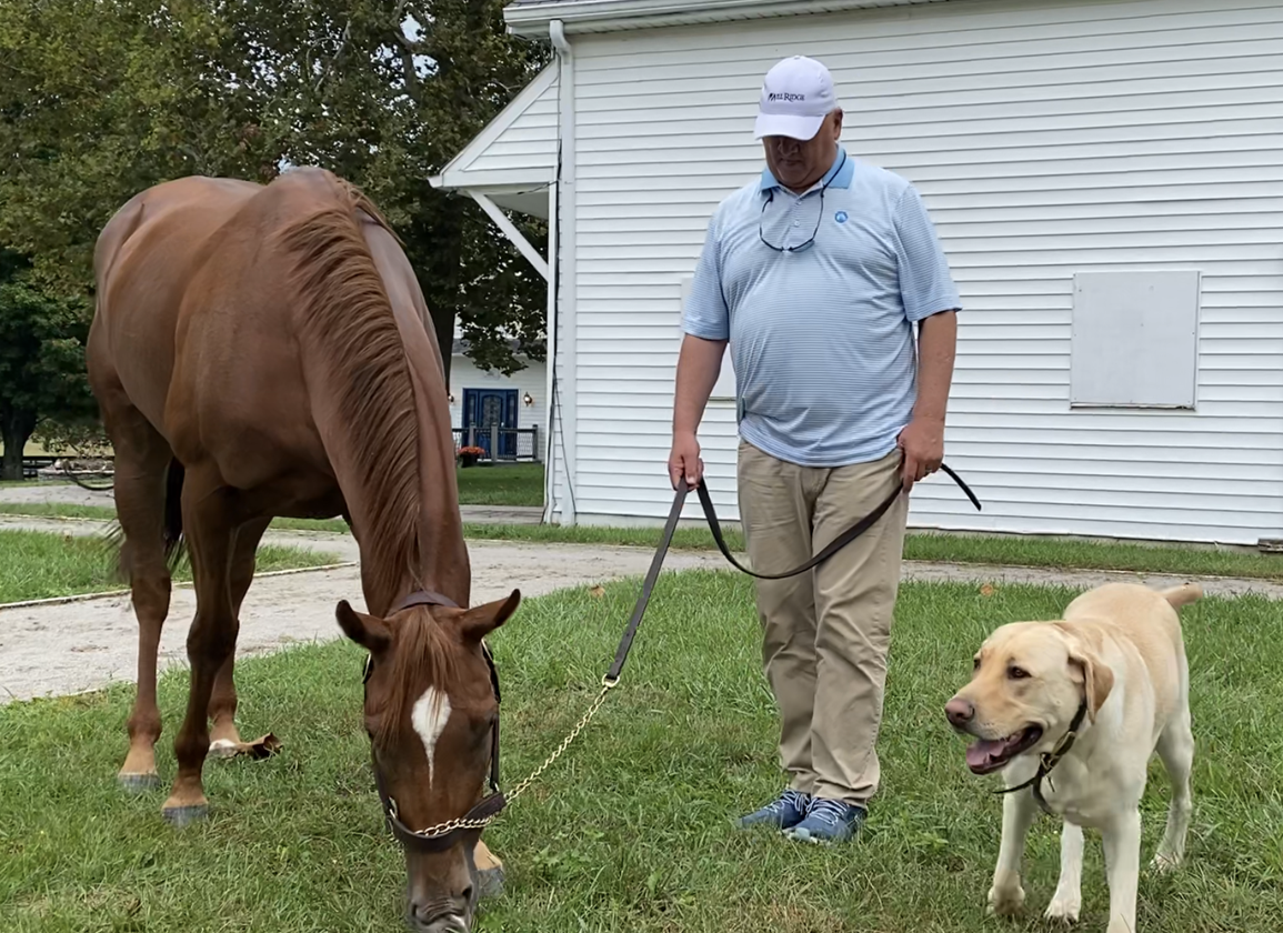 'Special Filly' Swiss Skydiver Will Be Missed at McPeek Barn